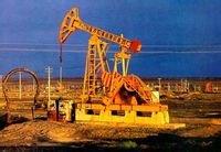 新疆行之二十克拉玛依油田 - 木兰花 - m13986235944的博客