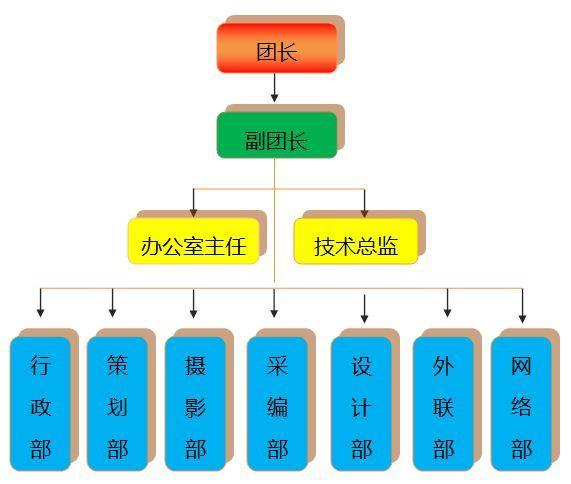 设计组织结构方案