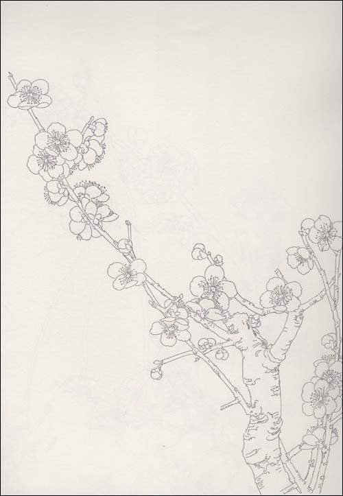 白描花卉 梅花-插图2