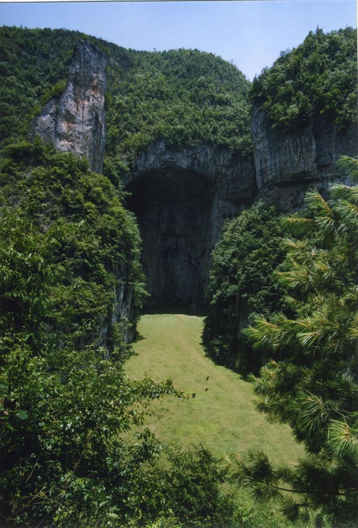 毕节国家森林公园