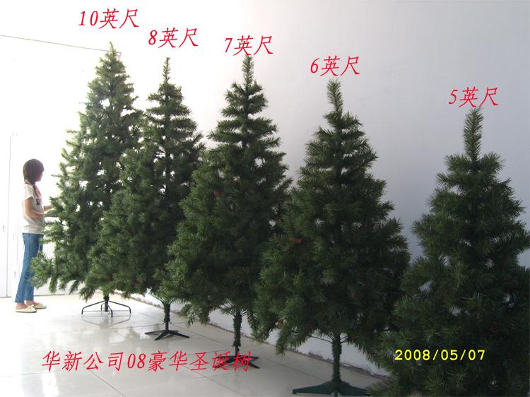 各种环艺树的手绘图