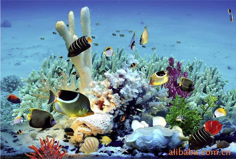 壁纸 海底 海底世界 海洋馆 水族馆 桌面 756_510