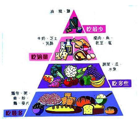 营养金字塔
